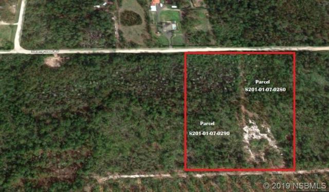 4130 Swamp Deer Road, New Smyrna Beach, FL 32168 (MLS #1050206) :: BuySellLiveFlorida.com