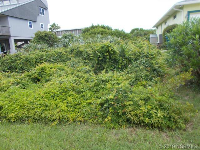 0 Catfish Avenue, New Smyrna Beach, FL 32169 (MLS #1050257) :: Florida Life Real Estate Group