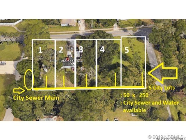 1704 Enterprise Avenue, New Smyrna Beach, FL 32168 (MLS #1050513) :: Florida Life Real Estate Group