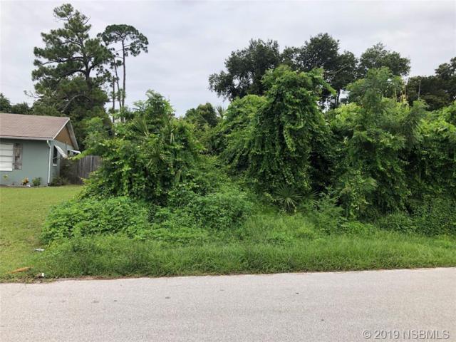 2422 Travelers Palm Drive, Edgewater, FL 32141 (MLS #1050535) :: Florida Life Real Estate Group