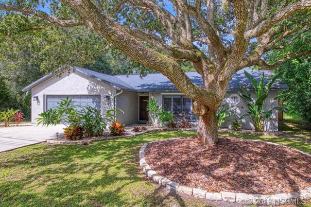 4765 S Peninsula Drive, Ponce Inlet, FL 32127 (MLS #1050583) :: Florida Life Real Estate Group