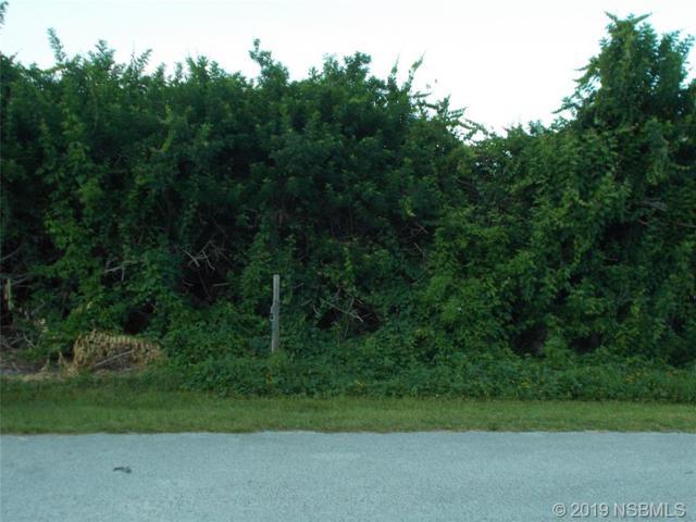 6308 Engram Road, New Smyrna Beach, FL 32169 (MLS #1050585) :: Florida Life Real Estate Group