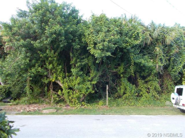 25 Oak Tree Drive, New Smyrna Beach, FL 32169 (MLS #1050586) :: Florida Life Real Estate Group