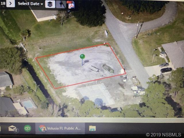 3102/3104 India Palm Drive Drive, Edgewater, FL 32141 (MLS #1050589) :: Florida Life Real Estate Group