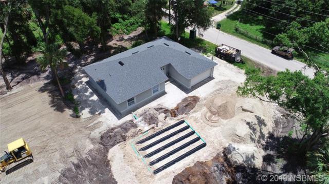 319 Ingham Road, New Smyrna Beach, FL 32168 (MLS #1050598) :: Florida Life Real Estate Group
