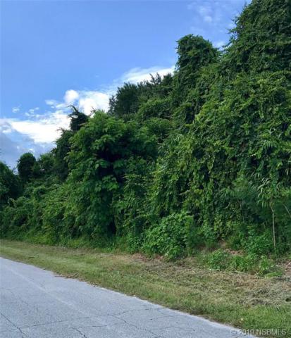 2327 Fern Palm Drive, Edgewater, FL 32141 (MLS #1050602) :: Florida Life Real Estate Group