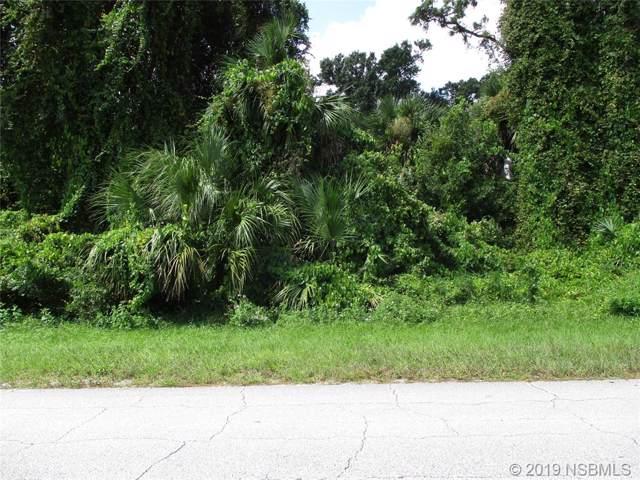 2700 Hibiscus Drive, Edgewater, FL 32141 (MLS #1052664) :: Florida Life Real Estate Group