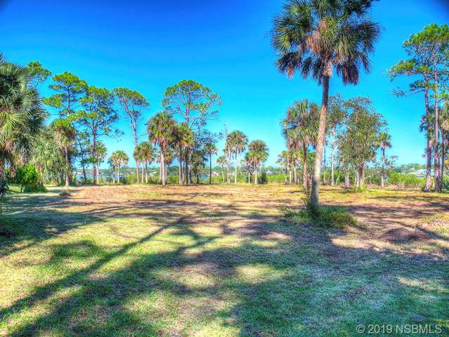 1879 Bayview Drive, New Smyrna Beach, FL 32168 (MLS #1052711) :: Florida Life Real Estate Group