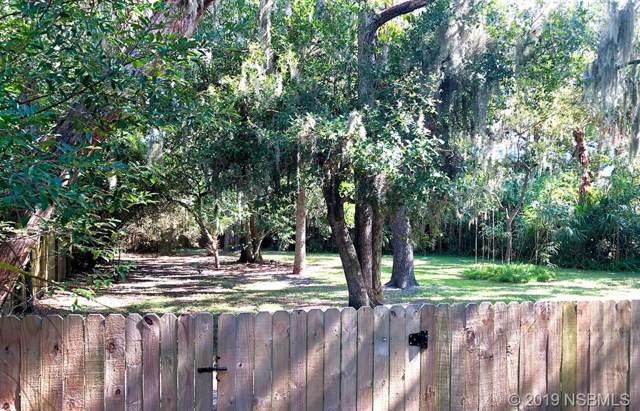 511 Ball Street, New Smyrna Beach, FL 32168 (MLS #1053939) :: Florida Life Real Estate Group