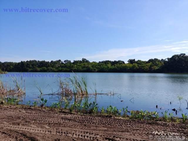 975 Stacy Lane, New Smyrna Beach, FL 32168 (MLS #1055942) :: Florida Life Real Estate Group