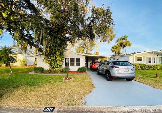 207 Schooner Avenue, Edgewater, FL 32141 (MLS #1057185) :: Florida Life Real Estate Group