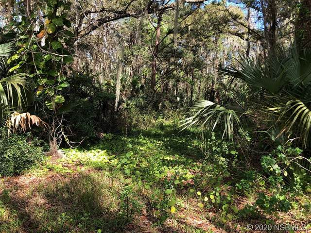 0 Swoope Drive, New Smyrna Beach, FL 32168 (MLS #1057272) :: Florida Life Real Estate Group