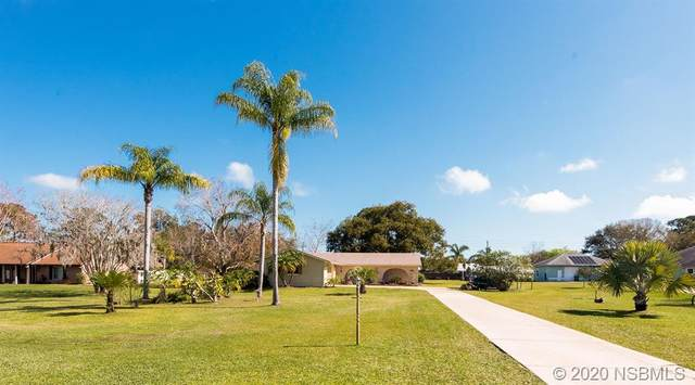 1777 N Pinedale Road, Edgewater, FL 32132 (MLS #1057311) :: Florida Life Real Estate Group