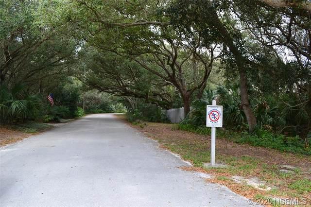 4386 S Sea Mist Drive, New Smyrna Beach, FL 32169 (MLS #1057322) :: Florida Life Real Estate Group