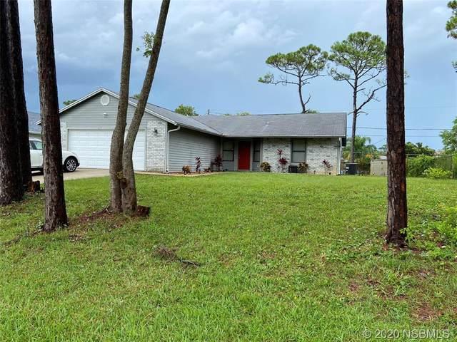 2621 Travelers Palm Drive, Edgewater, FL 32141 (MLS #1059836) :: BuySellLiveFlorida.com