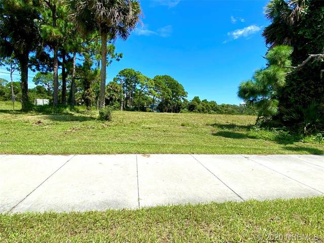 2503 Ridgewood Avenue, Edgewater, FL 32141 (MLS #1060598) :: Florida Life Real Estate Group