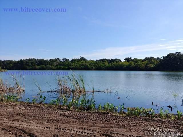1015 Stacy Lane, New Smyrna Beach, FL 32168 (MLS #1060643) :: Florida Life Real Estate Group