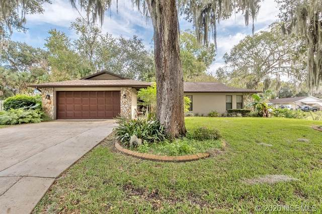 3127 Mango Tree Drive, Edgewater, FL 32141 (MLS #1061628) :: Florida Life Real Estate Group