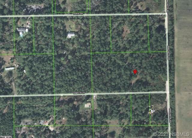 442 Ranchette Road, New Smyrna Beach, FL 32168 (MLS #1062171) :: Florida Life Real Estate Group