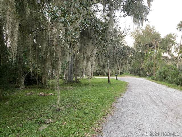 2061 Paige Avenue, New Smyrna Beach, FL 32168 (MLS #1062262) :: BuySellLiveFlorida.com