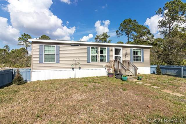 4179 Budd Road, New Smyrna Beach, FL 32168 (MLS #1062556) :: BuySellLiveFlorida.com