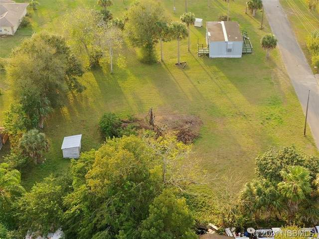 221 Adams Street, Oak Hill, FL 32759 (MLS #1062559) :: Florida Life Real Estate Group