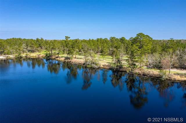 4370 Cow Creek Road, Edgewater, FL 32141 (MLS #1062999) :: Florida Life Real Estate Group