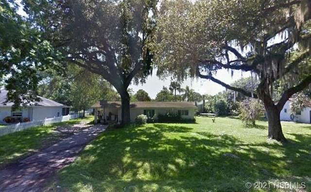 2120 Queen Palm Drive, Edgewater, FL 32141 (MLS #1063133) :: Florida Life Real Estate Group