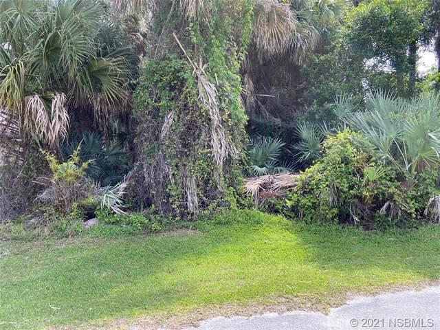 7 Palm Drive, New Smyrna Beach, FL 32169 (MLS #1063263) :: Florida Life Real Estate Group