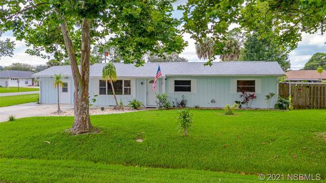 2530 Victory Palm Drive, Edgewater, FL 32141 (MLS #1064590) :: Florida Life Real Estate Group