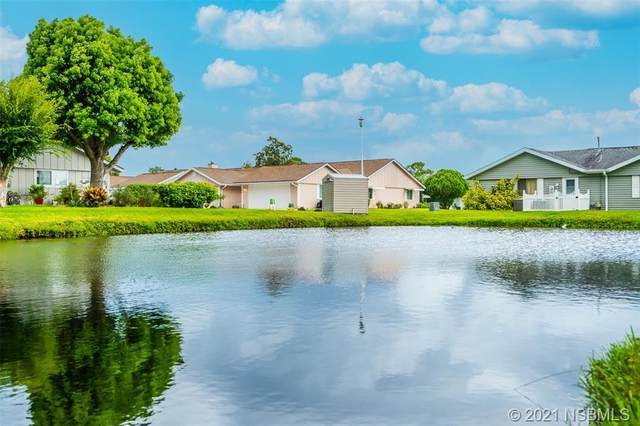 36 Andrea Drive, New Smyrna Beach, FL 32168 (MLS #1064624) :: Florida Life Real Estate Group