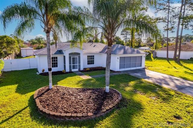 3047 Sabal Palm Drive, Edgewater, FL 32141 (MLS #1066492) :: Florida Life Real Estate Group