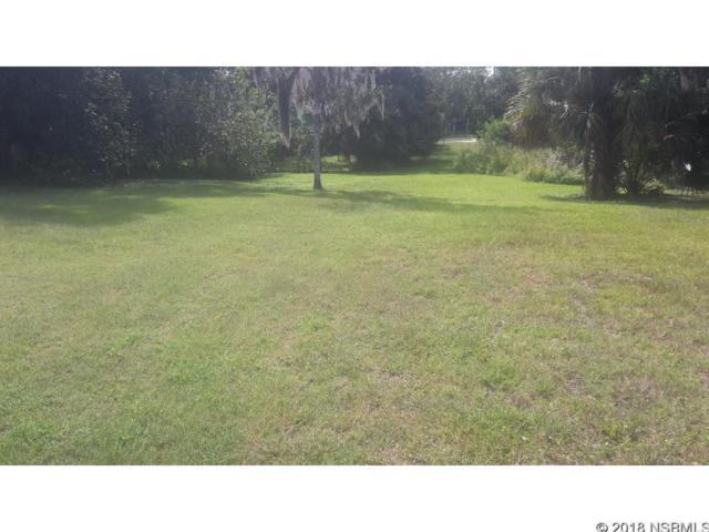 334 Sheldon Street, New Smyrna Beach, FL 32168 (MLS #1038640) :: Florida Life Real Estate Group