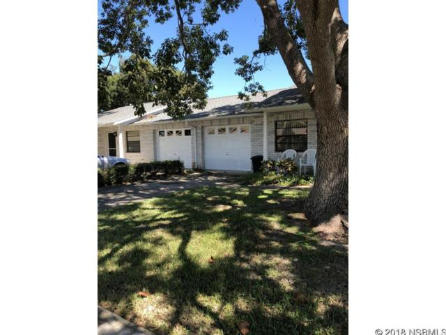 309 & 311 Sea Hawk Court, Edgewater, FL 32141 (MLS #1039088) :: Florida Life Real Estate Group