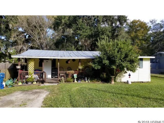 1167 Elizabeth Street, New Smyrna Beach, FL 32168 (MLS #1039205) :: Florida Life Real Estate Group