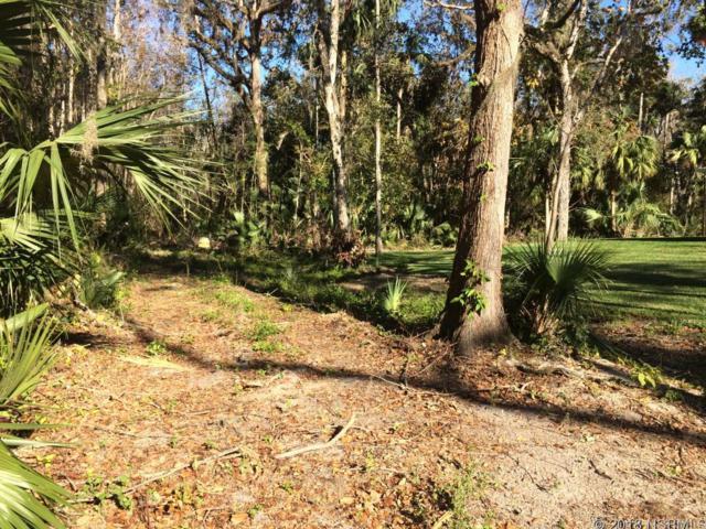 0 Juanita Drive, New Smyrna Beach, FL 32168 (MLS #1039336) :: Florida Life Real Estate Group