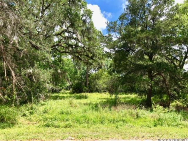 1249 Elizabeth Street, New Smyrna Beach, FL 32168 (MLS #1041006) :: Florida Life Real Estate Group