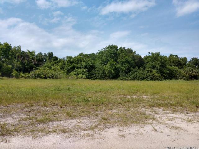 0 Mango Tree Drive, Edgewater, FL 32132 (MLS #1041152) :: Florida Life Real Estate Group