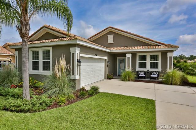 3447 Luna Bella Lane, New Smyrna Beach, FL 32168 (MLS #1050539) :: Florida Life Real Estate Group