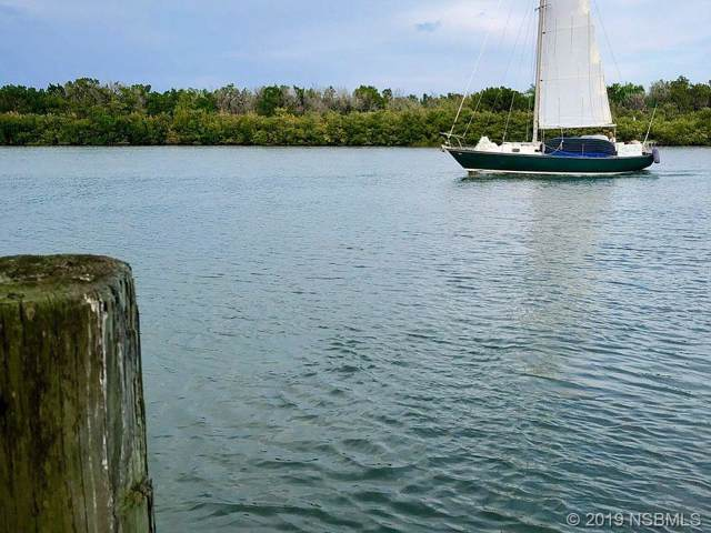 293 Randle Avenue, Oak Hill, FL 32759 (MLS #1054013) :: Florida Life Real Estate Group