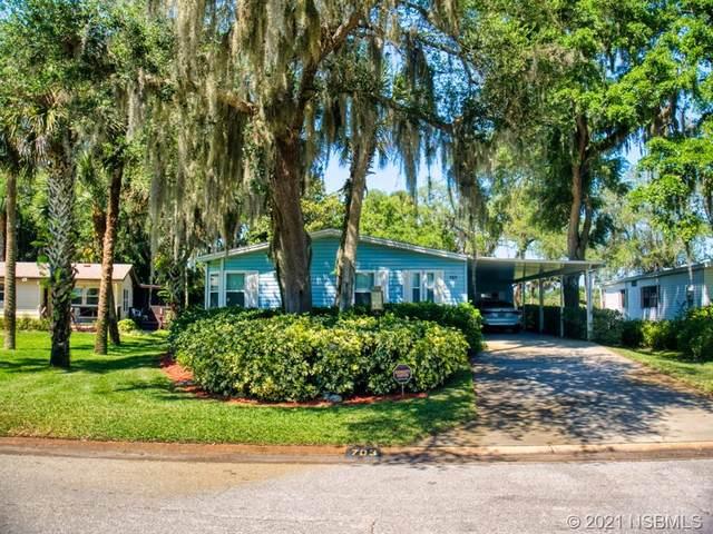 703 Navigators Way, Edgewater, FL 32141 (MLS #1063212) :: Florida Life Real Estate Group