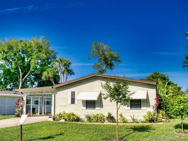 203 Schooner Avenue, Edgewater, FL 32141 (MLS #1063395) :: Florida Life Real Estate Group