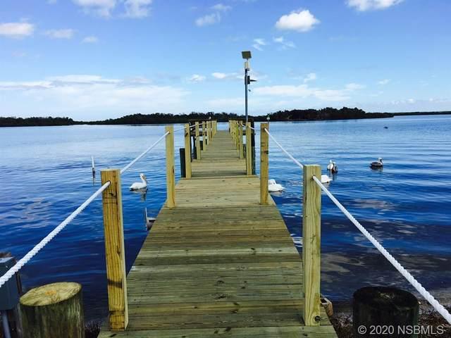 445 River Road, Oak Hill, FL 32759 (MLS #1054274) :: Florida Life Real Estate Group