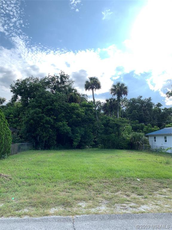 434 Perdita Avenue, Edgewater, FL 32132 (MLS #1050600) :: Florida Life Real Estate Group