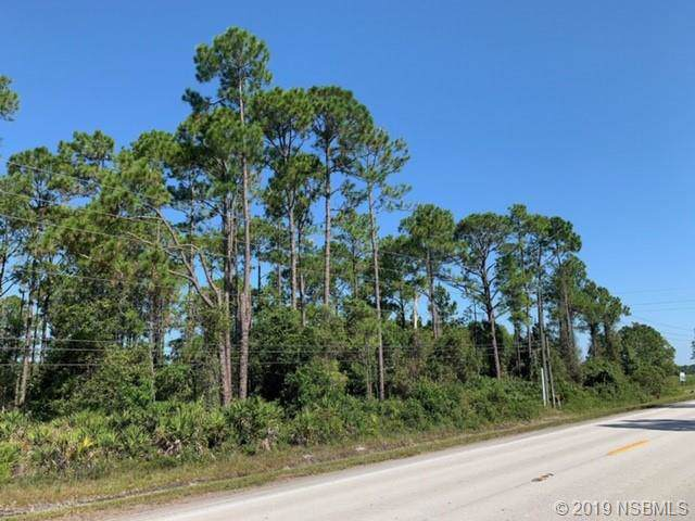 0 State Rd 415, New Smyrna Beach, FL 32168 (MLS #1052583) :: Florida Life Real Estate Group