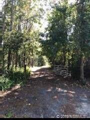 4799 Maple Lane, Edgewater, FL 32141 (MLS #1054261) :: Florida Life Real Estate Group