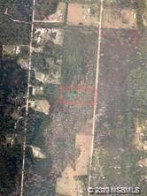 4125 Quail Nest Lane, New Smyrna Beach, FL 32168 (MLS #1061093) :: BuySellLiveFlorida.com