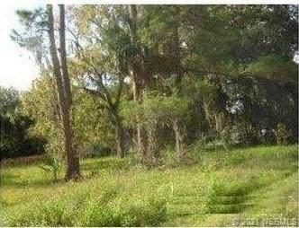 1997 Pioneer Trail, New Smyrna Beach, FL 32168 (MLS #1062173) :: Florida Life Real Estate Group