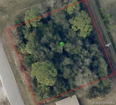2303 India Palm Drive, Edgewater, FL 32141 (MLS #1064509) :: Florida Life Real Estate Group