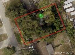 2513 India Palm Drive, Edgewater, FL 32141 (MLS #1064510) :: Florida Life Real Estate Group